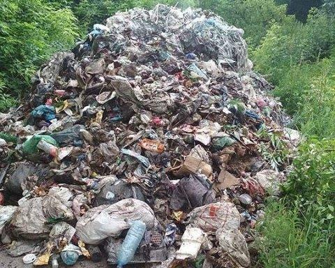Львовский мусоровоз выгрузил кучу посреди села на Черниговщине