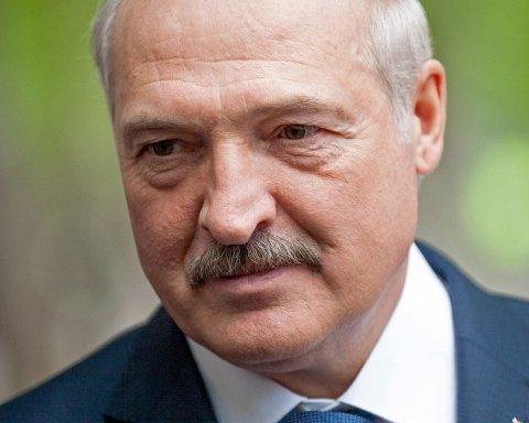 Появилось видео, как Лукашенко накануне юбилея собирает арбузы