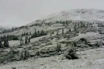 23 июня в Карпатах выпал снег