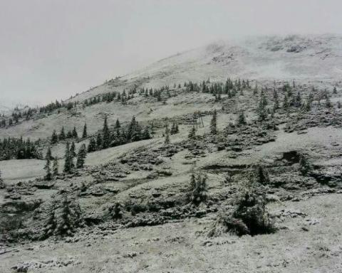 Зима посреди лета: в Карпатах выпал снег
