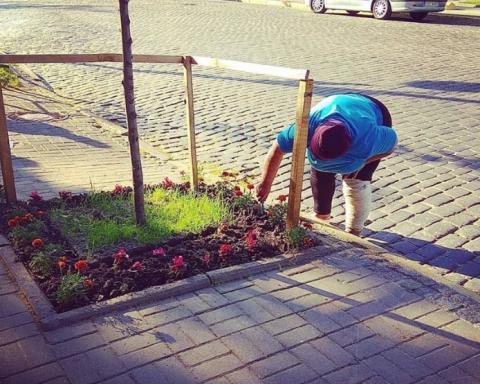 Женщина-бомж разводит цветы возле Администрации Президента