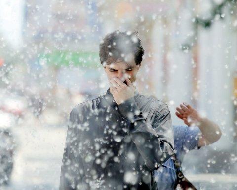 Як врятуватися від сезонної алергії на пух: важливі поради