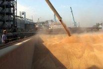 Оккупированный Крым нарастил экспорт зерна в Сирию