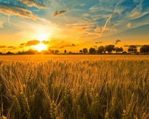 Сьогодні день літнього сонцестояння: що це значить