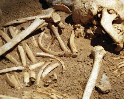 Мужчина, сажая картошку, нашел кости бывшего мужа своей жены
