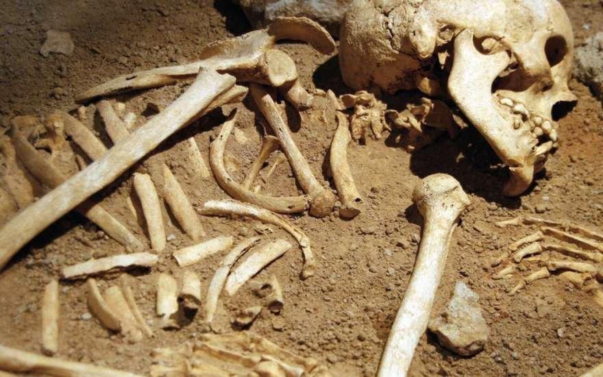 Чоловік, саджаючи картоплю, знайшов кістки колишнього коханця своєї дружини