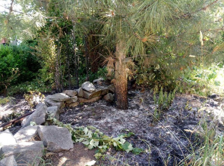 Женщина погибла в собственном дворе во время сжигания сухой травы