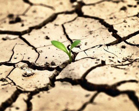 Крым без воды из Днепра засыхает, фермеры спасают урожай