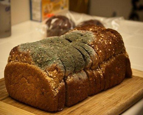 Киевлян поразил хлеб с «сюрпризом» в столичном супермаркете