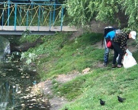 Браконьєри отруїли диких качок на київському озері