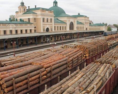 Раскрыта схема незаконного вывоза древесины из Украины: клиентами оказались известные компании