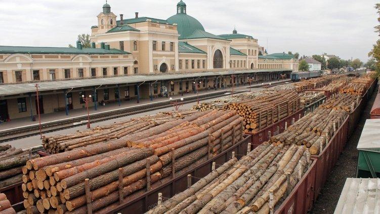 Розкрито схему незаконного вивозу деревини з України: клієнтами виявилися відомі компанії