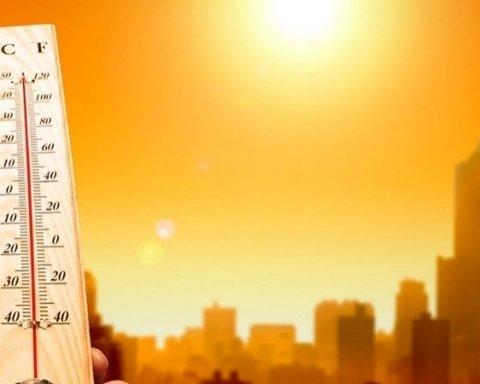 Такого не было уже давно: более 30 человек погибли из-за аномальной жары