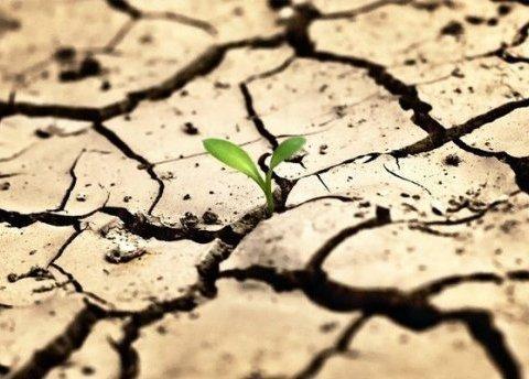 Крим перетвориться на пустелю: розкрито долю постачання води на окупований півострів