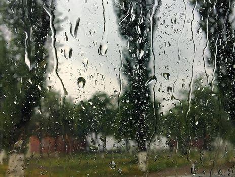 У Хмельницькому вирувала потужна злива, вітер поламав дерева