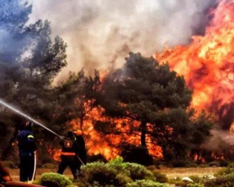 Греция в огне: на острове Эвбея объявлено чрезвычайное положение