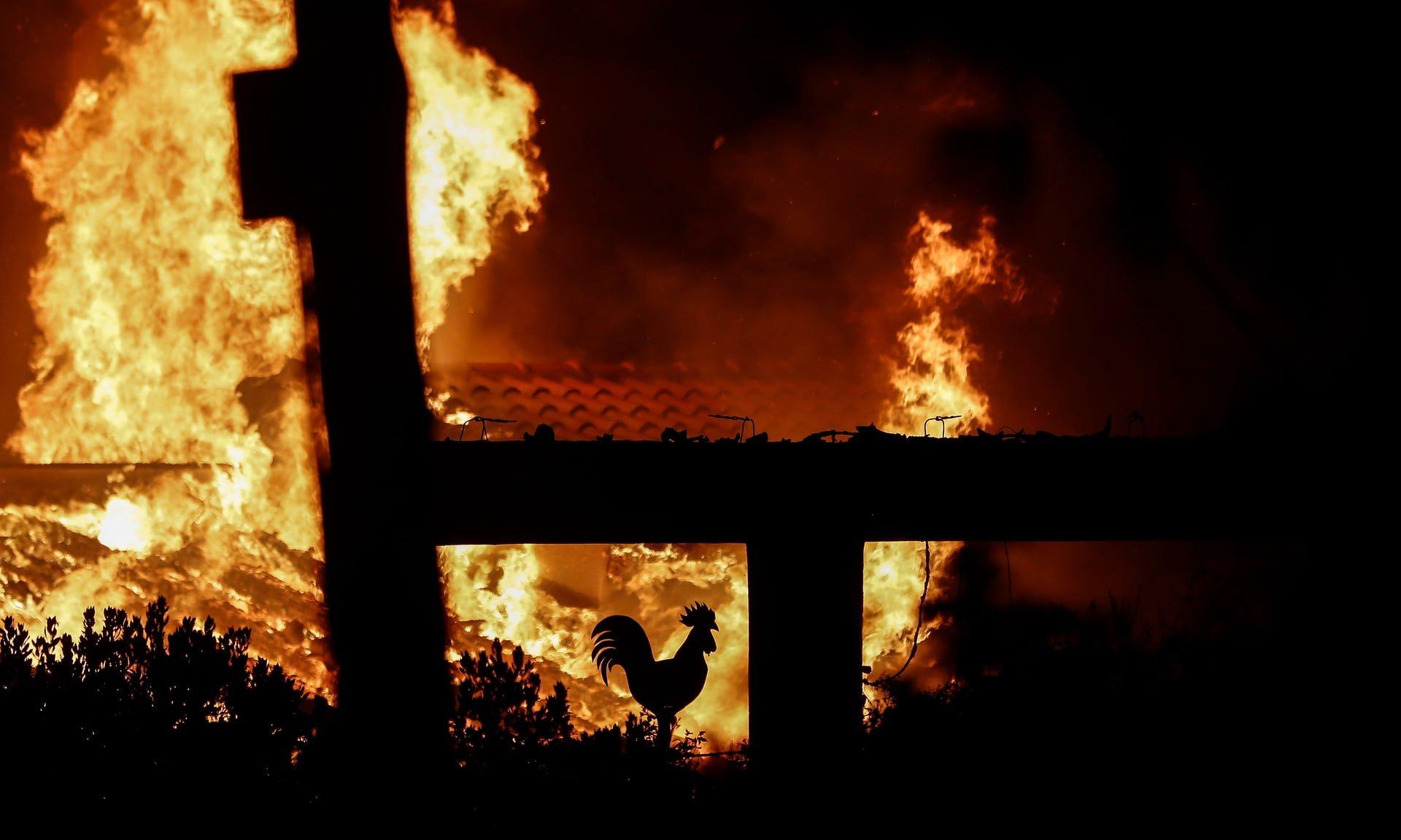 Пожары не утихают, люди продолжают умирать: что происходит на известном курорте