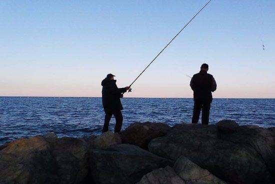 Рыбаки обнаружили в море мутанта