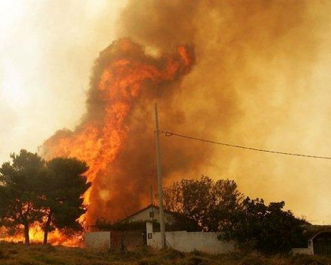 Появились космические фото масштабного пожара в Греции
