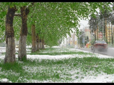Росію раптово засипало снігом посеред літа