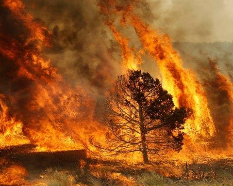 Бомбами гасили полум'я: шведи винайшли незвичайний спосіб боротьби з пожежами