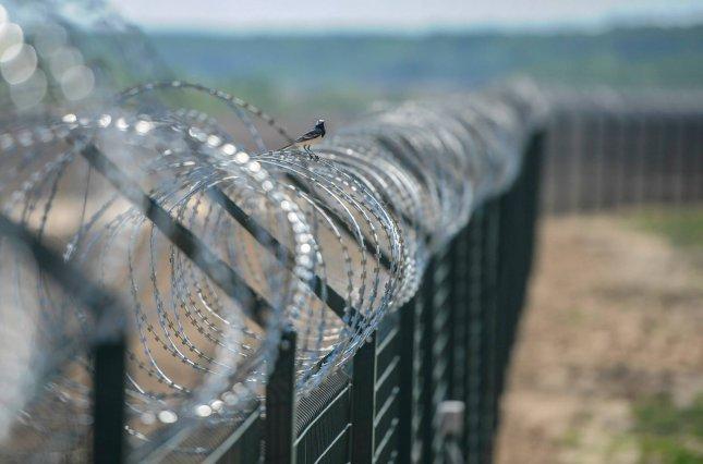 Литва хочет построить стену на границе с Беларусью из-за мигрантов