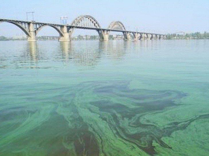 Киевлянам сообщили о серьезной опасности в водоемах