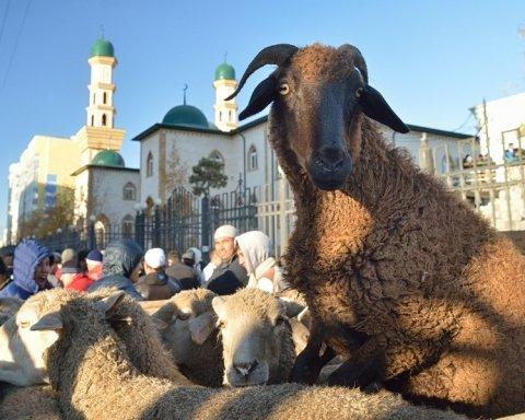 Курбан-байрам: что нужно знать о празднике жертвоприношения