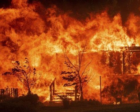 В окупованому Криму дві доби не вщухають лісові пожежі
