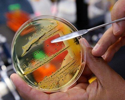 Массовое отравление шаурмой: пострадавшим наконец установили диагноз