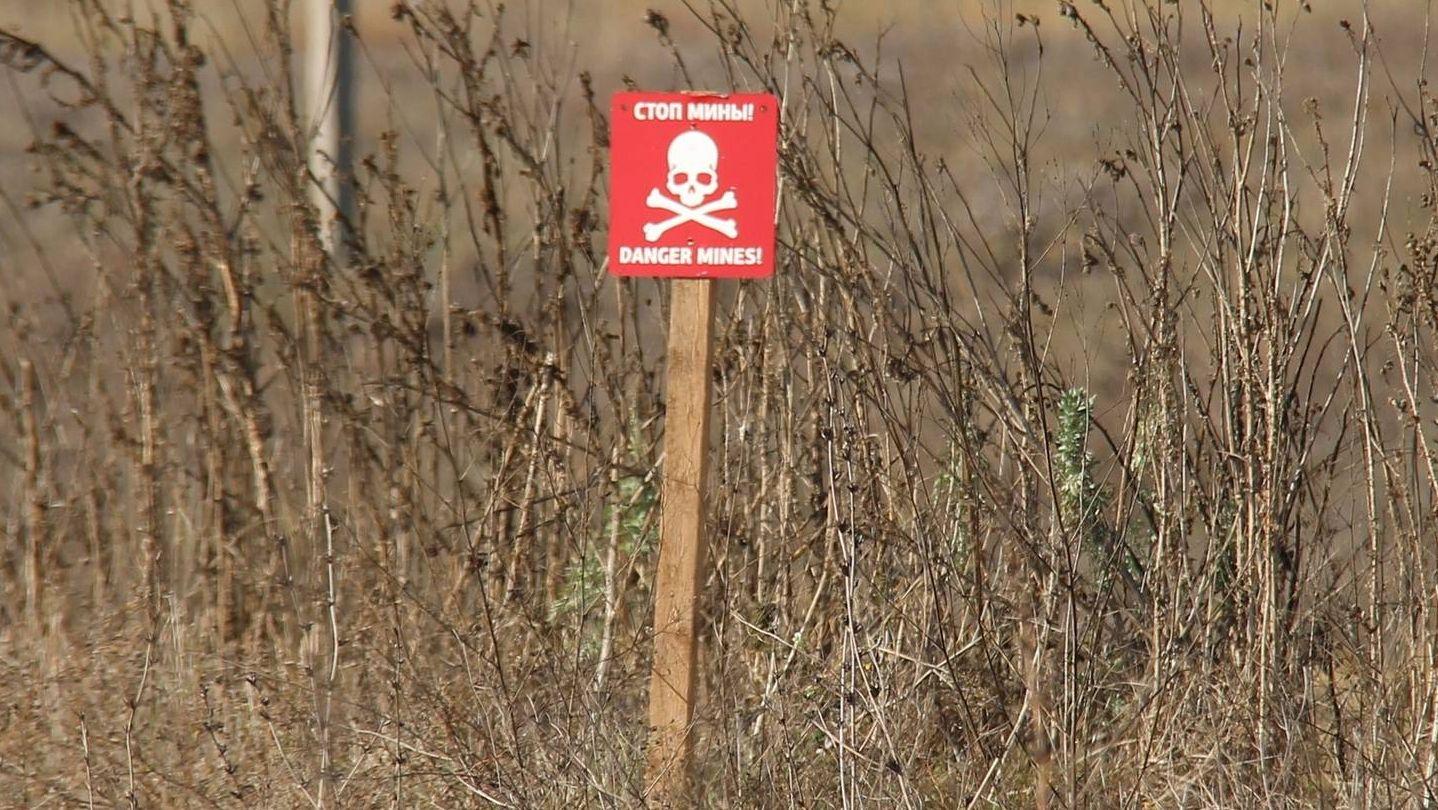 Под Одессой нашли полторы сотни мин времен второй Мировой