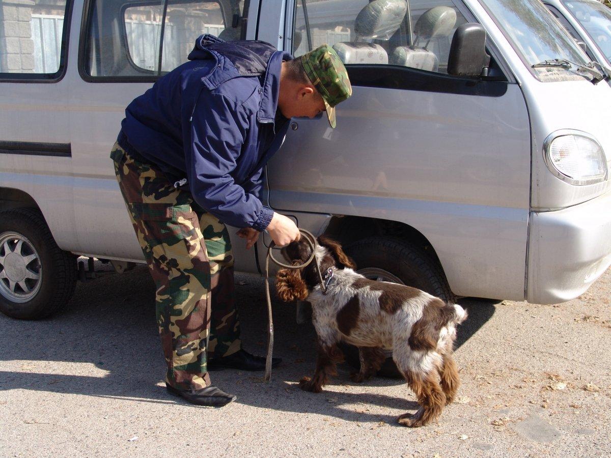 ФСБшника из Крыма задержали с большой партией наркотиков