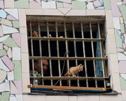 Просто ужас: Совет Европы поразил состояние тюрем Украины