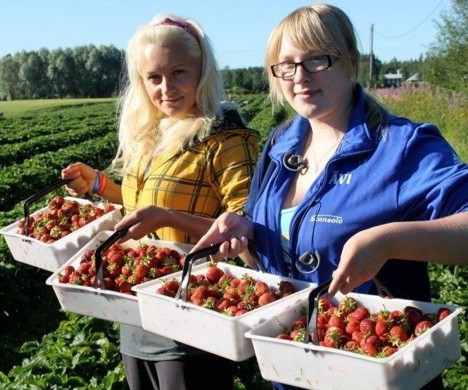 Скільки людей виїде з України на заробітки: названо приголомшливу цифру