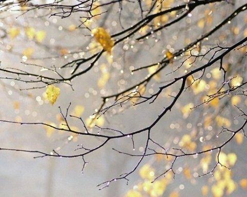 Кошмар: синоптик дала свежий прогноз погоды