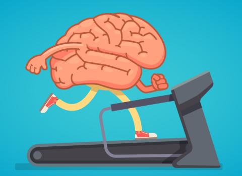 Всего десять минут в день: эти простые советы улучшат вашу память