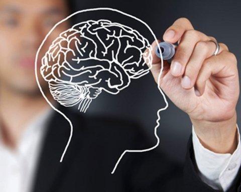 Ученые обнаружили зависимость между работой мозга и временем года