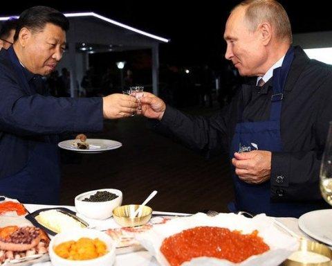 В сети показали, на какое животное похож Путин: смешное фото