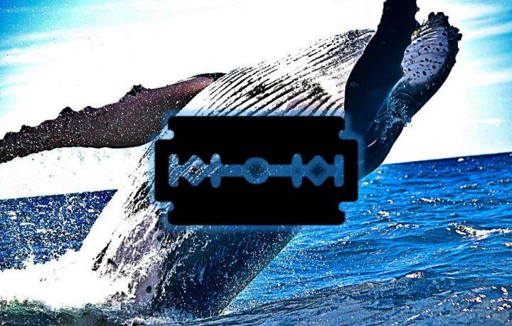 Синий кит приказал: украинский военный спас девушку, которая собиралась совершить непоправимое