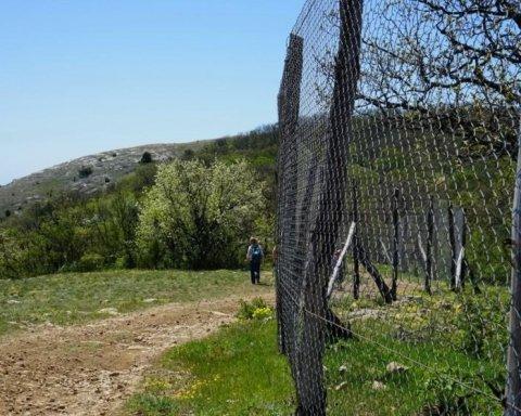 Горы мусора и разруха: в сети показали, во что оккупанты превратили Крым