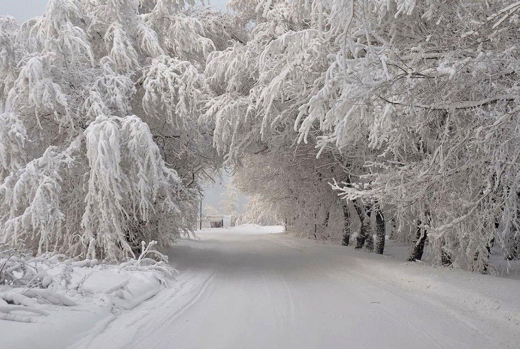 35 дней морозов: синоптик дал тревожный прогноз погоды для Украины
