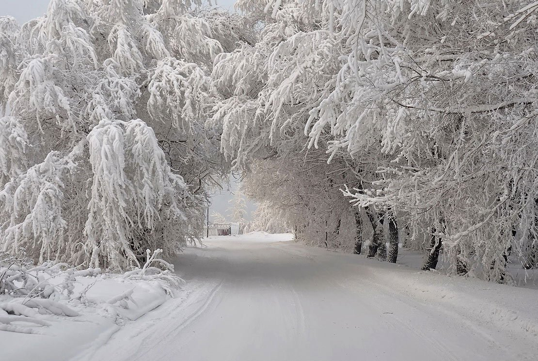 Украинцам обещают морозы в 30 градусов и «космические» платежки: как можно сэкономить на отоплении