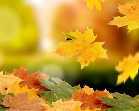 23 вересня – день осіннього рівнодення: звичаї і прикмети