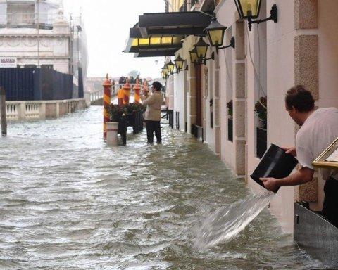 Главное — поесть: появилось видео затопленного ресторана в Венеции