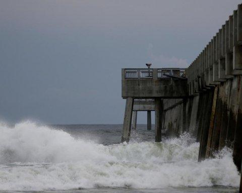 Ураган Майкл в США: появились жуткие данные о количестве погибших