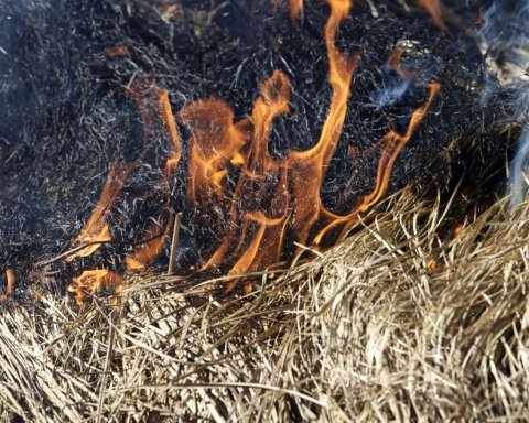 Супрун розповіла, чим небезпечні підпали після збору врожаю