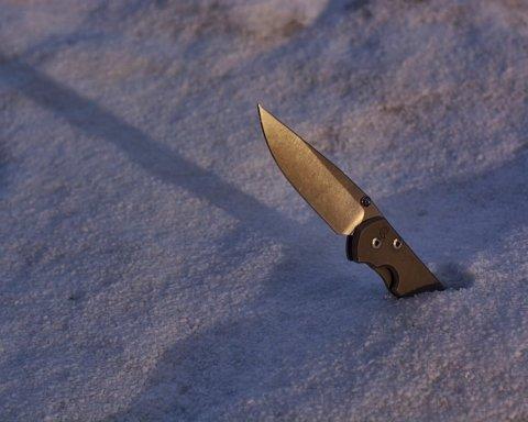 В Антарктиде произошла резня, есть пострадавший: детали необычного ЧП
