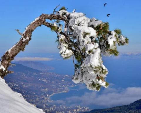 Крым поразил пейзажами со снегом: яркие фото