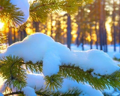Коли до України прийде справжня зима зі снігом і морозами: синоптик назвав дату