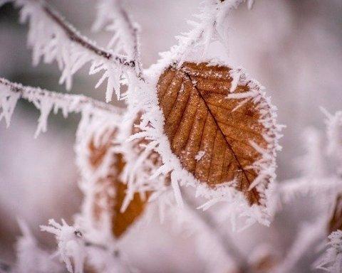 Зима близко: синоптик дала неутешительный прогноз погоды для Украины